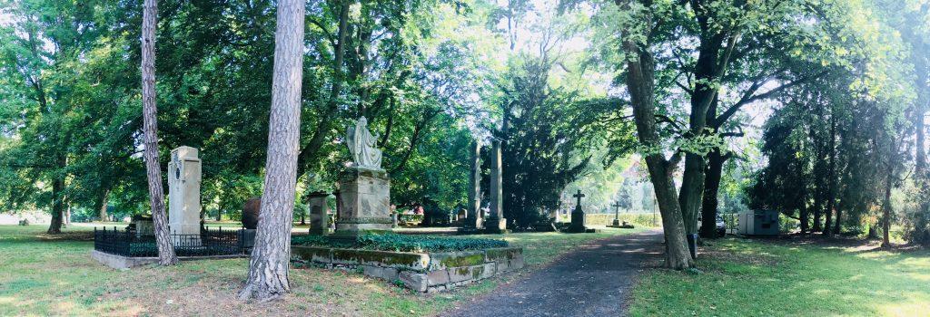 Albani Friedhof Dr. Wanja Wedekind